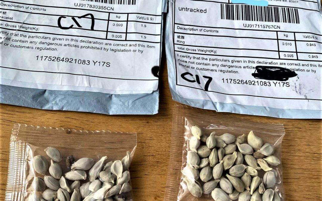Cómo consiguen las empresas más ventas online enviando semillas gratis en usuarios aleatorios del mundo con la técnica Brushing